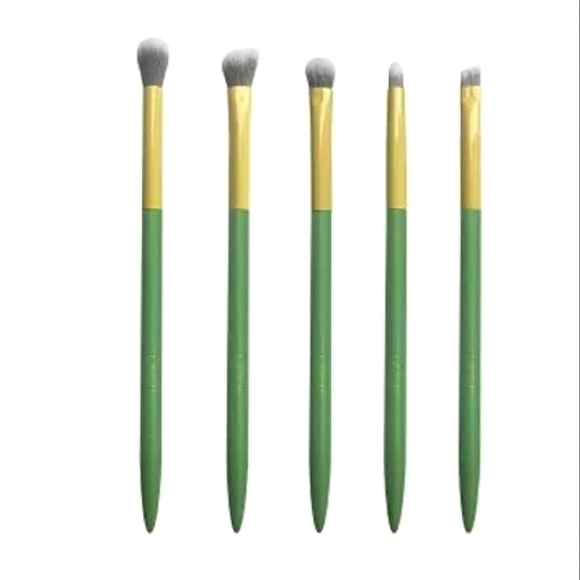5 Eye Makeup Brush Collection in Package